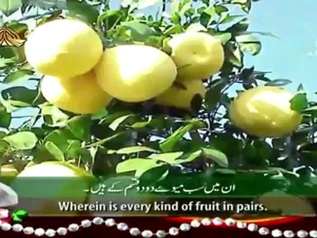 surah rehman qari syed sadaqat ali in hd